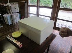 ぼうしパン 104.jpg